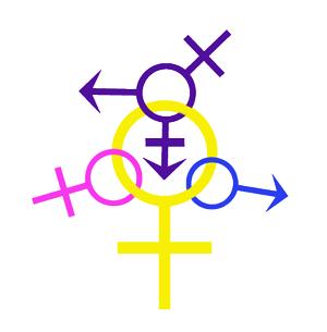 что такое пансексуальность
