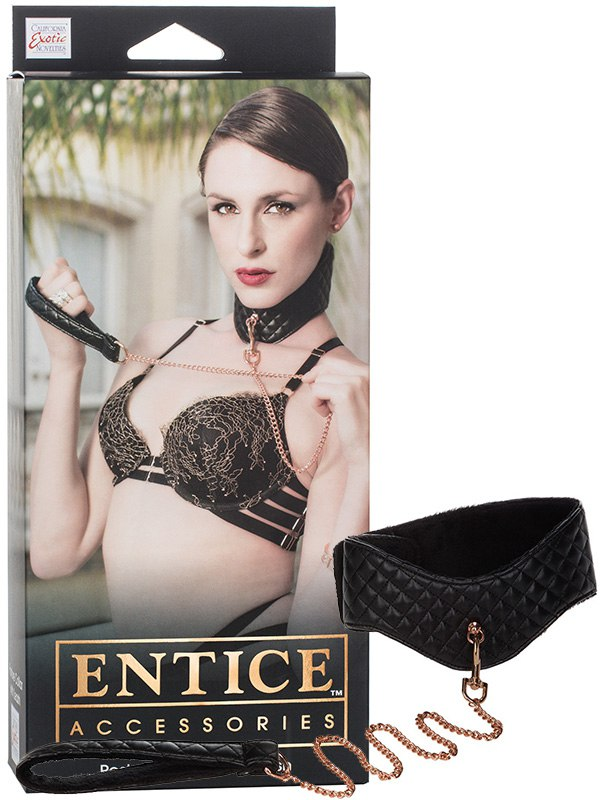 ������� Entice Posture Collar with Leash � �������� � ������