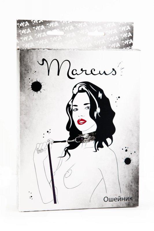 Кружевной ошейник TOYFA Marcus – серебристый