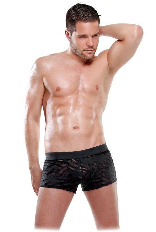 Здесь можно купить   Сексуальные ажурные боксеры See-Thru Boxer Мужское белье